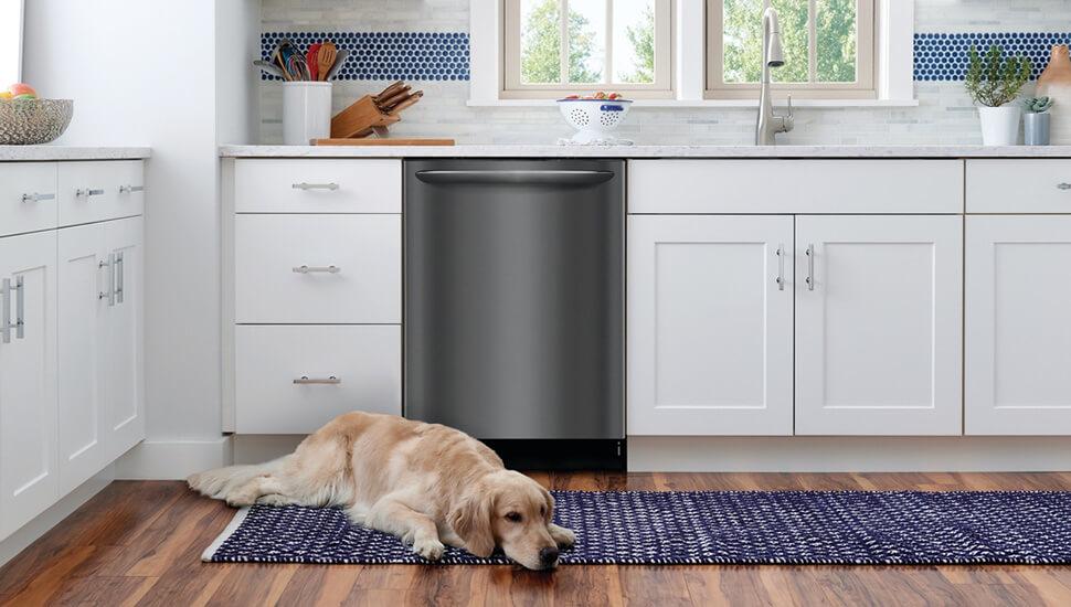 dog lying in front of Frigidaire dishwasher